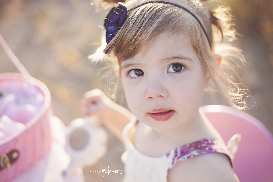 Amy Clemons Photography | Orange County, CA Photographer