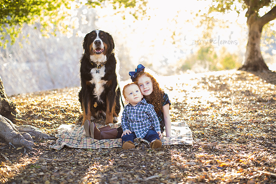 Brea CA, Carbon Canyon Park, Amy Clemons Photography (7)