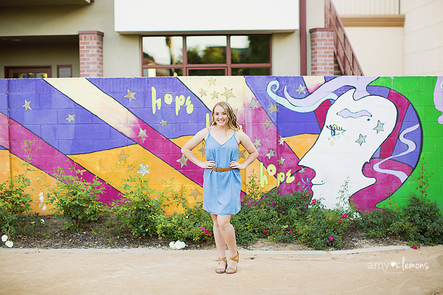 Orange County Photographer Amy Clemons Photography (13)